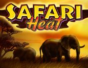 Safari_Heat_180х138